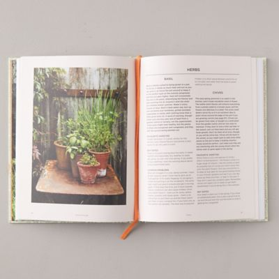 Grow Fruit and Vegetables in Pots - book from Terrain