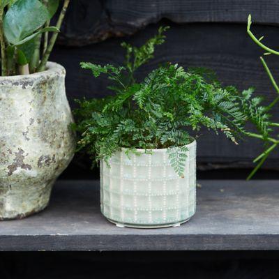 Gridded Ceramic Pot