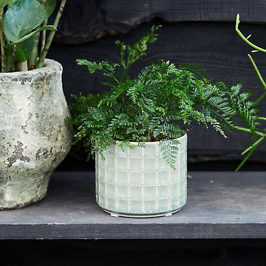 View larger image of Gridded Ceramic Pot