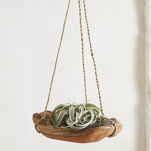 View larger image of Carved Teak Hanging Basket Planter