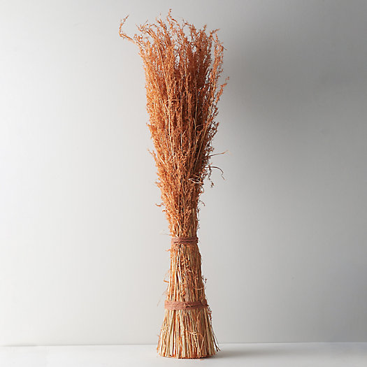 View larger image of Dried Alpha Grass