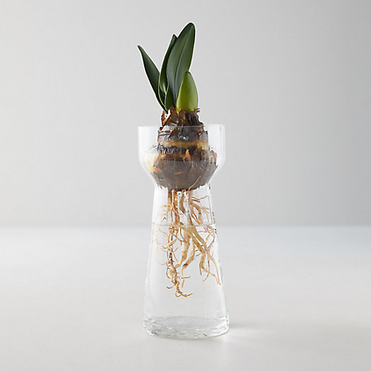 View larger image of Faceted Bulb Vase