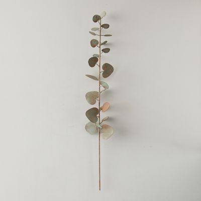 Iron Eucalyptus Stem