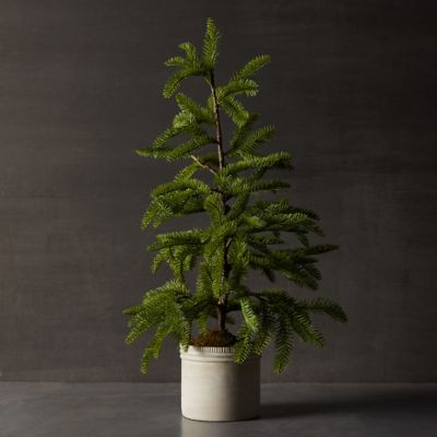 Faux Tabletop Pine Tree, Clay Pot