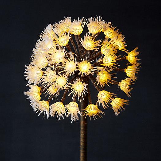 View larger image of Stargazer Nature Effects LED Dandelion