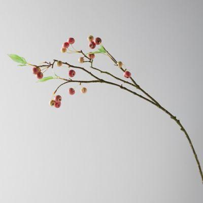 Faux Apple Branch