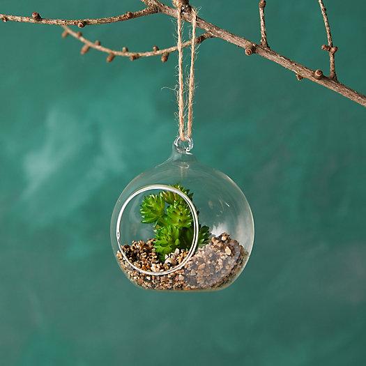View larger image of Faux Succulent Terrarium Ornament