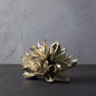 Metallic Preserved Star Pod