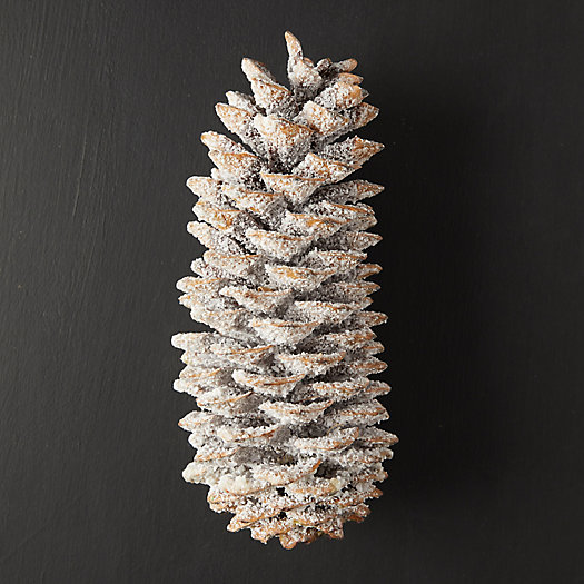 View larger image of Waxed Sugar Pine Cone