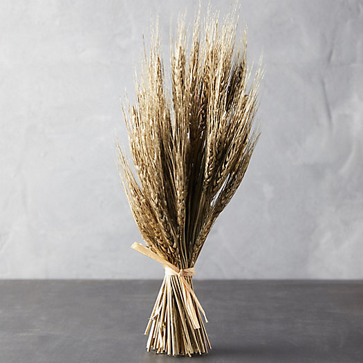 View larger image of Preserved Triticum Sheaf Bunch