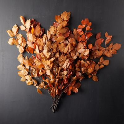 Preserved Beech Leaf Bunch