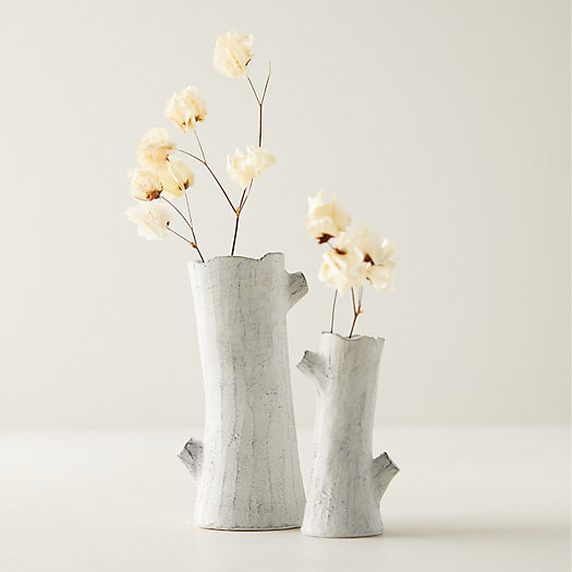 View larger image of Earthenware Birch Branch Bud Vase