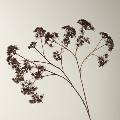 Faux Queen Anne's Lace Spray, Brown