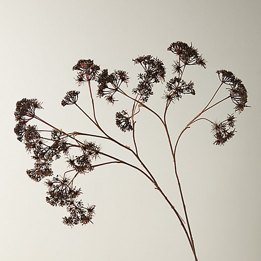View larger image of Faux Queen Annes Lace Spray, Brown