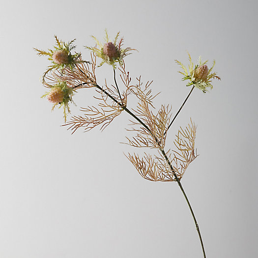 View larger image of Faux Thistle Stem