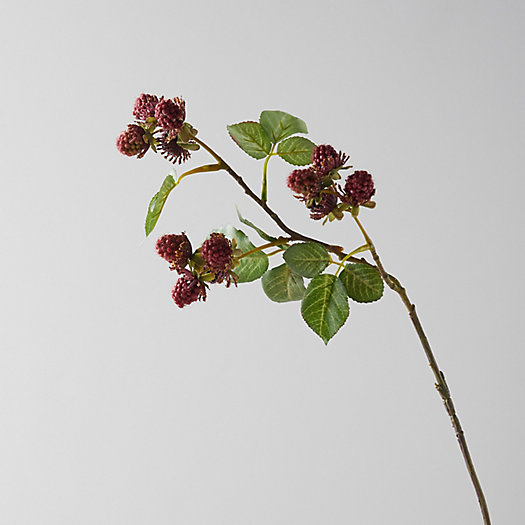 View larger image of Faux Blackberry Fruit Branch