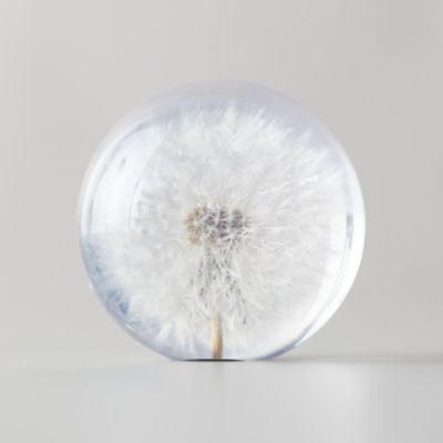 Resin Floral Paperweight