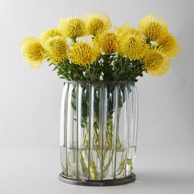 Fresh Yellow Pincushion Bunch