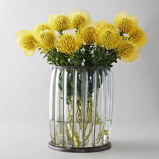View larger image of Fresh Yellow Pincushion Bunch