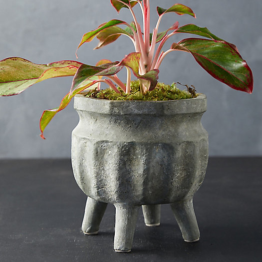 View larger image of Footed Ceramic Pot