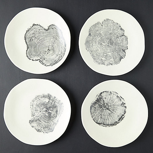 View larger image of Tree Ring Plates, Set of 4
