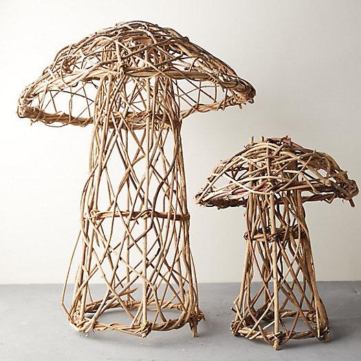 View larger image of Vine Mushroom