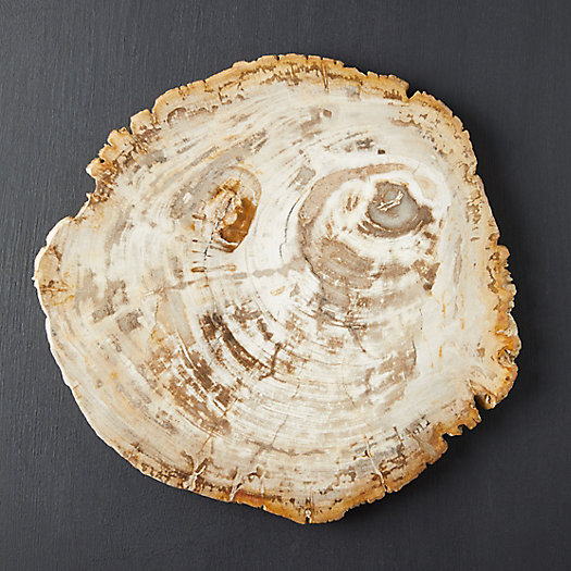 View larger image of Petrified Wood Serving Board
