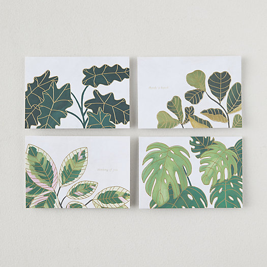 View larger image of Plants Pop Up Cards, Set of 8