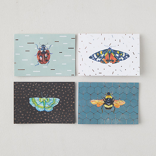View larger image of Winged Insect Pop Up Cards, Set of 8