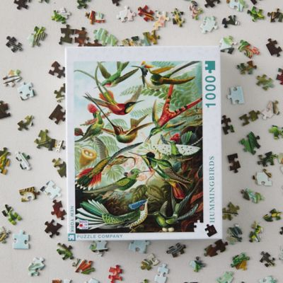 Hummingbirds Puzzle