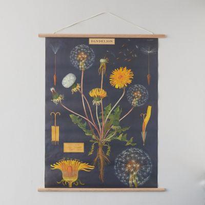 Dandelions Poster + Frame