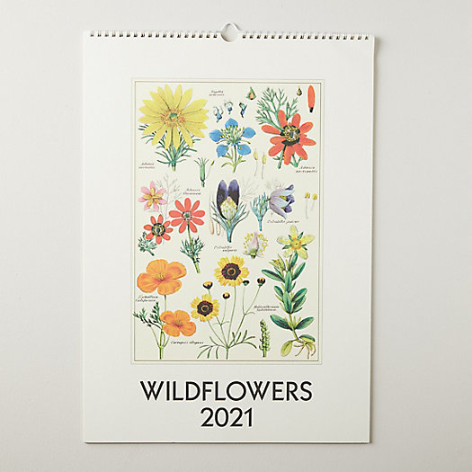 View larger image of Wildflowers 2021 Wall Calendar