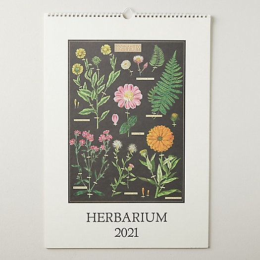 View larger image of Herbarium 2021 Wall Calendar