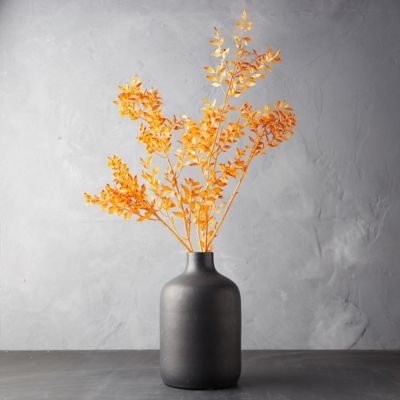 Preserved Ruscus Bunch, Orange