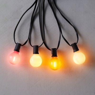 Stargazer Garden Lights Color Story Bulbs, Set of 7 Bulbs Only