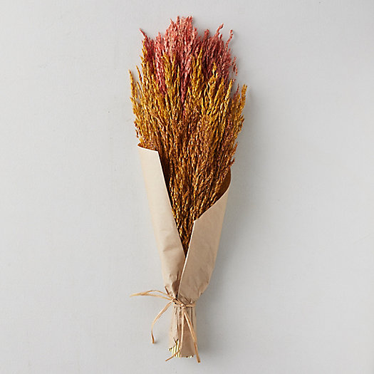 View larger image of Harvest Hues Preserved Grass Bouquet