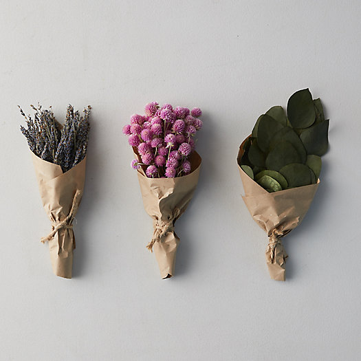 View larger image of Preserved Floral Bunches, Set of 3