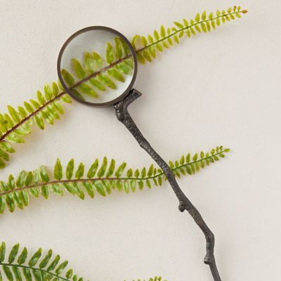 Antiqued Brass Magnifying Glass, Sprig