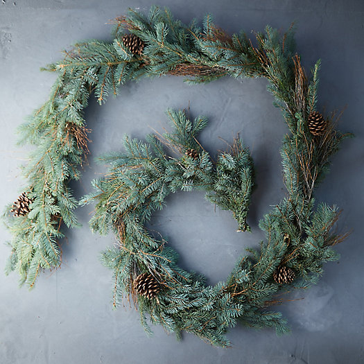 View larger image of Fresh Fir + Pine Cone Garland