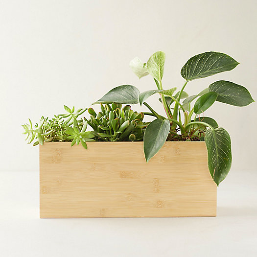 View larger image of Hydro Planter