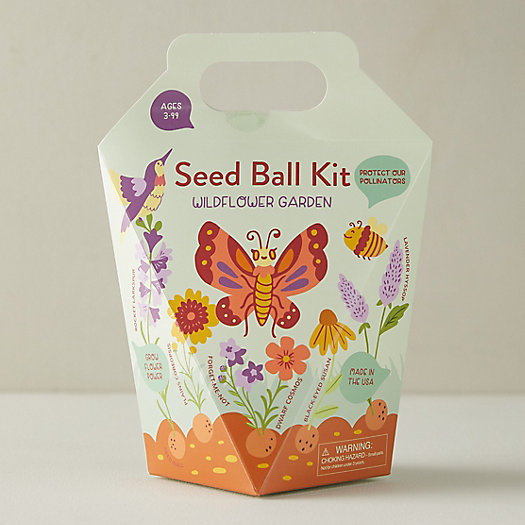 View larger image of Wildflower Garden Seed Ball Kit