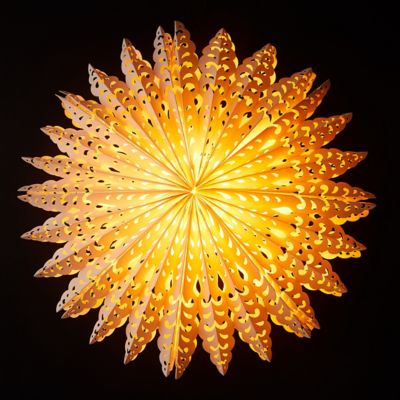 Lacy Star Pendant Light