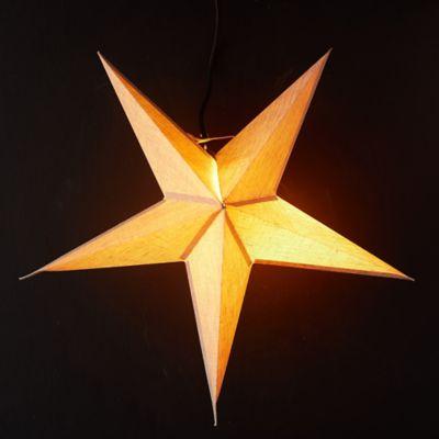 5 Point Star Pendant Light