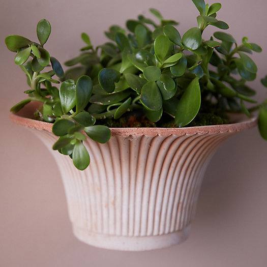 View larger image of Bergs Fluted Hanging Wall Pot