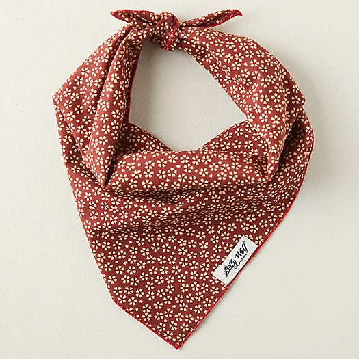 View larger image of Cotton Pet Bandana, Red Floral