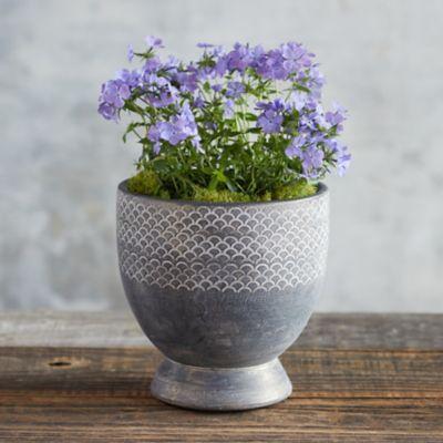 Ceramic Line Impressions Pot
