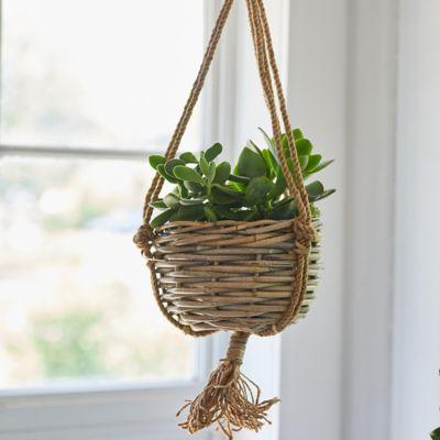 "Rattan Hanging Basket Pot, 7"""