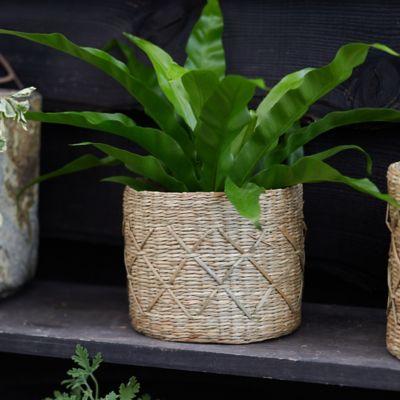 "Geo Seagrass Basket Pot, 6"""