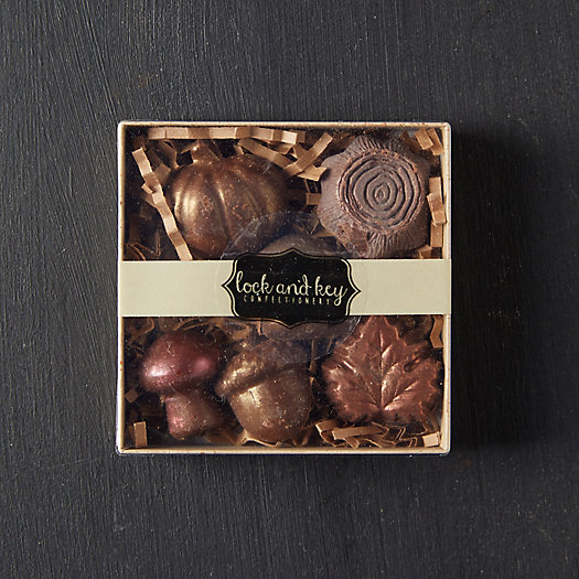 View larger image of Autumn Chocolates, Set of 6