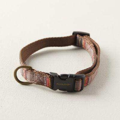 Pendleton Camp Hiker Pet Collar, Brown